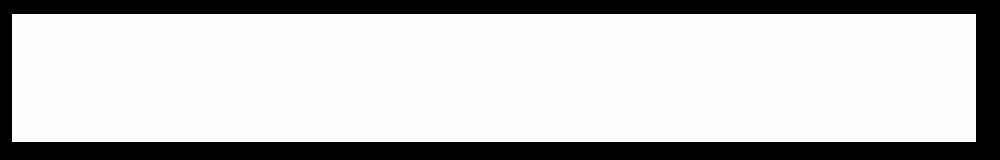 NAM logo white