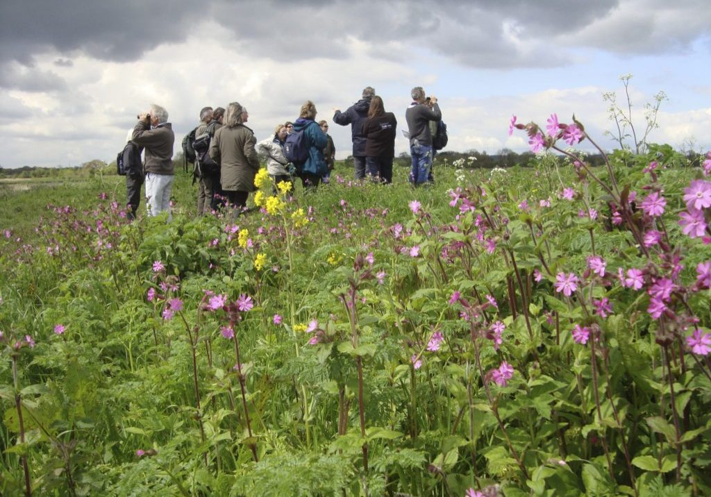 RSPB Council members visiting Jubilee Wetlands, Middleton Lakes RSPB Nature Reserve, Warwickshire, March