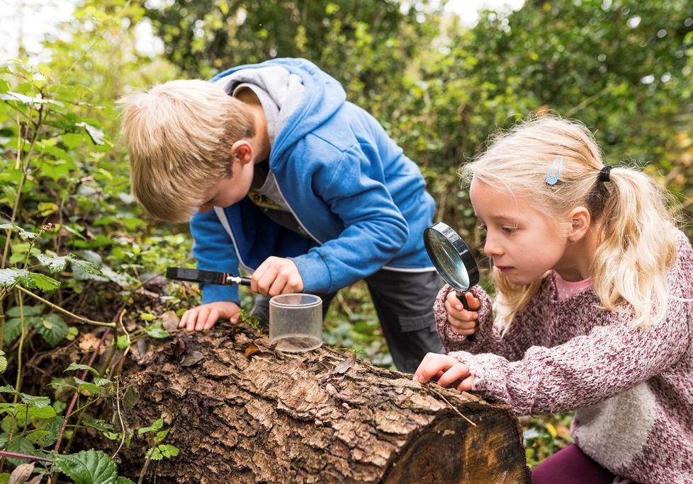 Children using magnifying glass - by Phil Barnes (rspb-images.com)